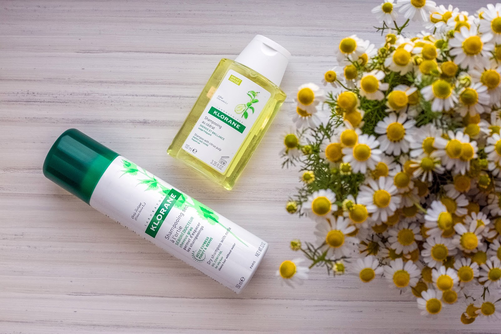 klorane shampoo buy